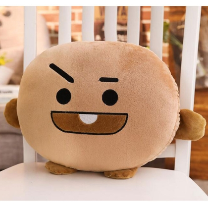 """ Bts "" Plush Pillow – Shooky"