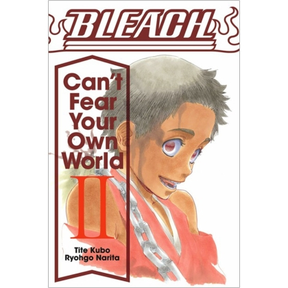 Light Novel: Bleach Can`t Fear Your Own World, Vol. 2